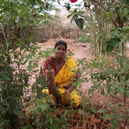 Anusuyamma runs a tree planting project involving women in 28 villages.