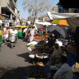 SEWA street vendors intend to buy land and start malls that sell organic produce from SEWA farm women.